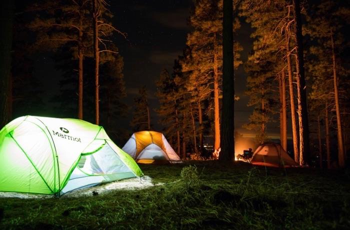 キャンプでできること